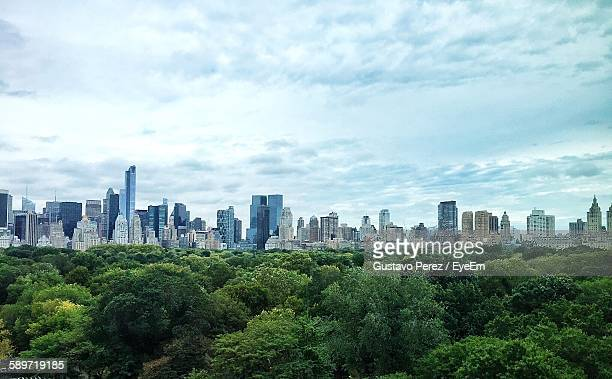 Green Trees In Central Park With Manhattan Skyline