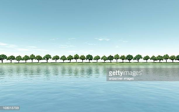 Green Trees on a Riverbank