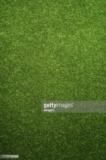 green turf texture - terreno di gioco foto e immagini stock