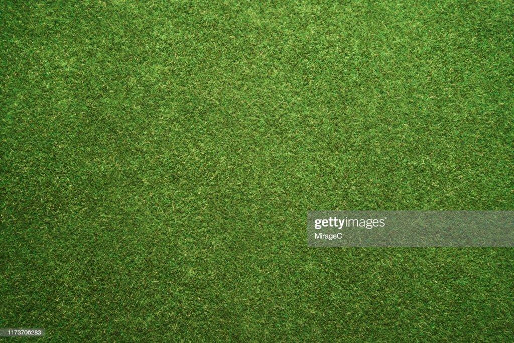 Green Turf Texture : Stock Photo