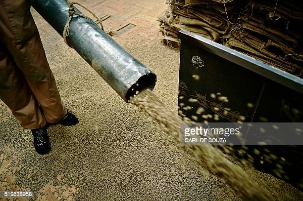 Green unroasted coffee beans are transfered at Dormans coffee factory in Nairobi on April 6 2016 Dormans has been roasting coffee since 1950 and is...