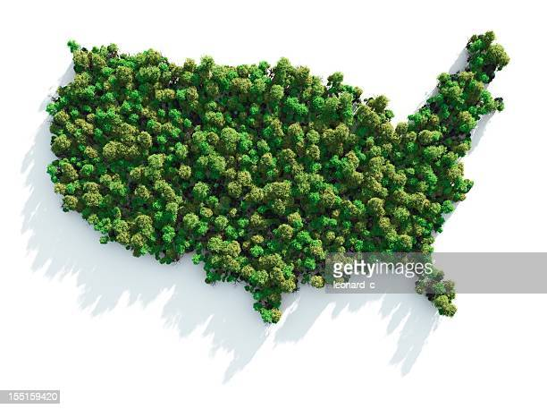 green usa - c usa stock pictures, royalty-free photos & images