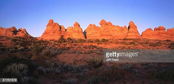 green vegetation grows near navajo sandstone formations. paria canyon - vermillion cliffs wilderness area, bureau of land management, arizona, colorado plateau. - paria canyon stock pictures, royalty-free photos & images