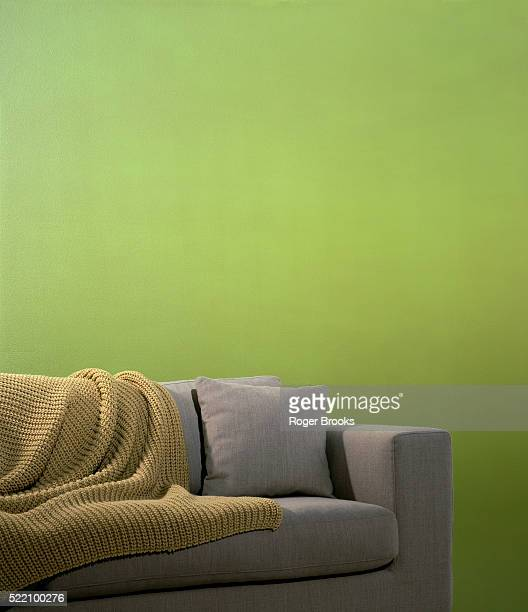 Green Wall, Gray Sofa