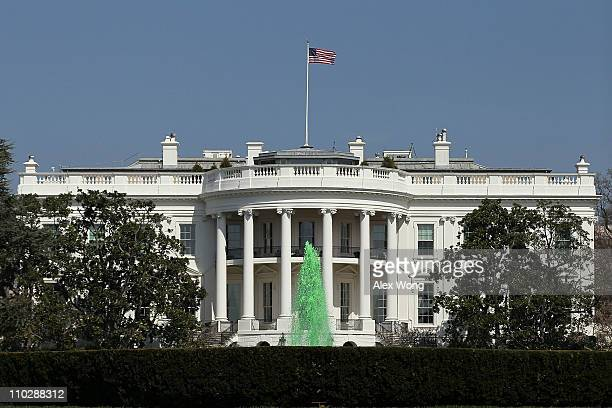 Green water comes out from the fountain at the South Lawn of the White House March 17 2011 in Washington DC US President Barack Obama was hosting...