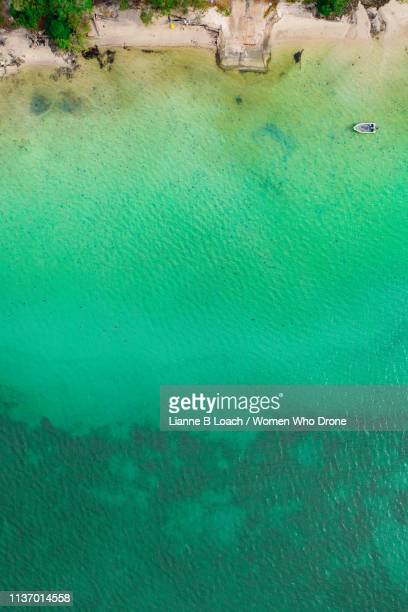 green water - lianne loach stock pictures, royalty-free photos & images
