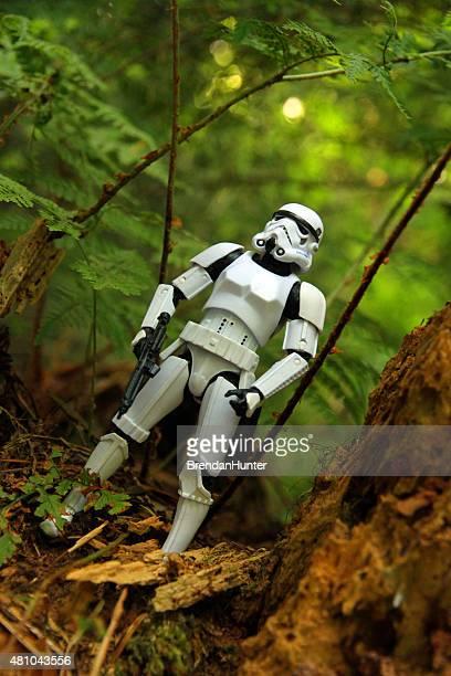 madera verde - hunter green fotografías e imágenes de stock