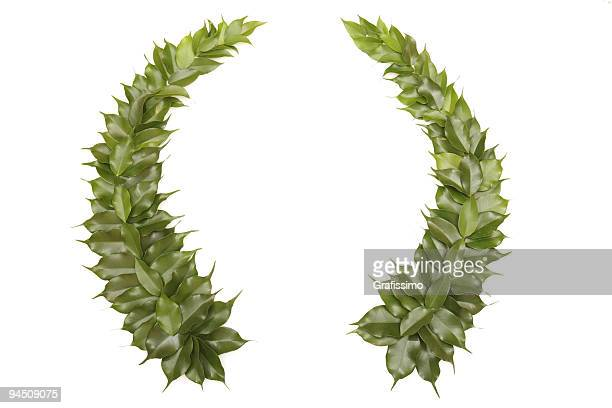 Green wreath isolated on white