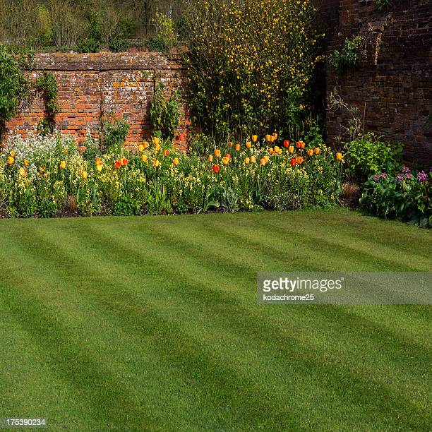 Green yard with garden and wall border