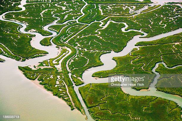 Greenborough Marshes