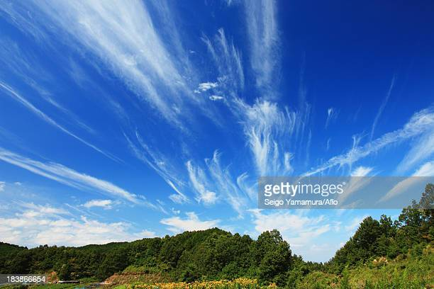 Greenery and blue sky with clouds in Sakurai, Nara Prefecture