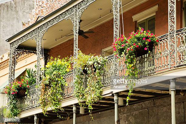 greenery on the balcony in french quarter, new orleans, louisiana - new orleans french quarter stock photos and pictures