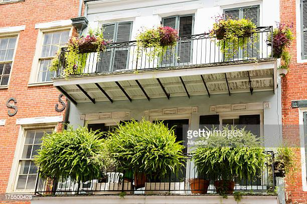 Greenery on the balcony in French Quarter, New Orleans, Louisiana