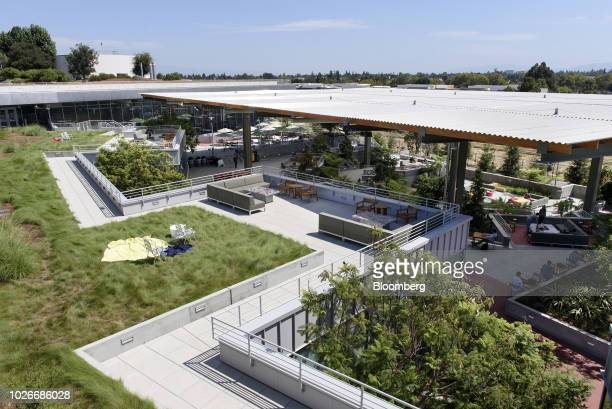 Greenery surrounds the tiered outdoor spaced, referred to as the Bowl, at the new Facebook Inc. Frank Gehry-designed MPK 21 office building in Menlo...