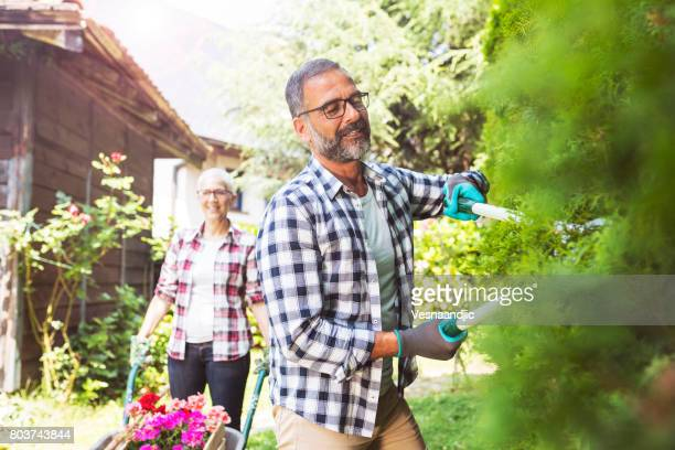 greenery with mature couple - gardening stock pictures, royalty-free photos & images