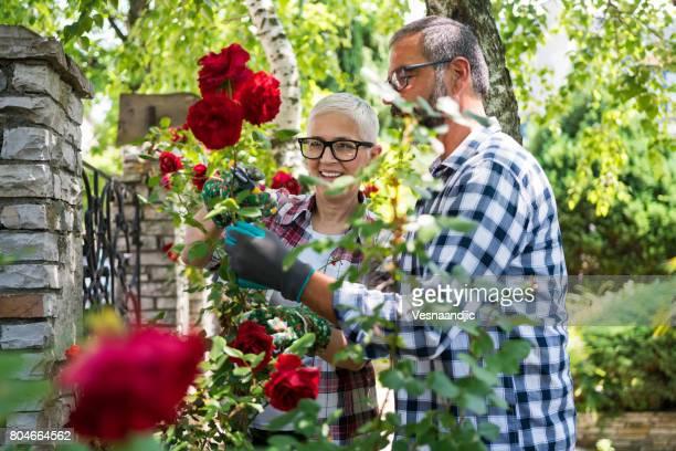 Verdure avec couple senior