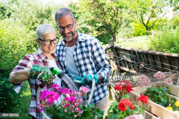 Grün mit älteres paar