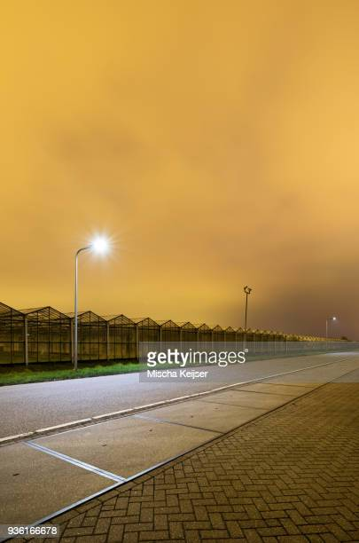 Greenhouse at night, in Westland, area with the highest concentration of greenhouses in Netherlands