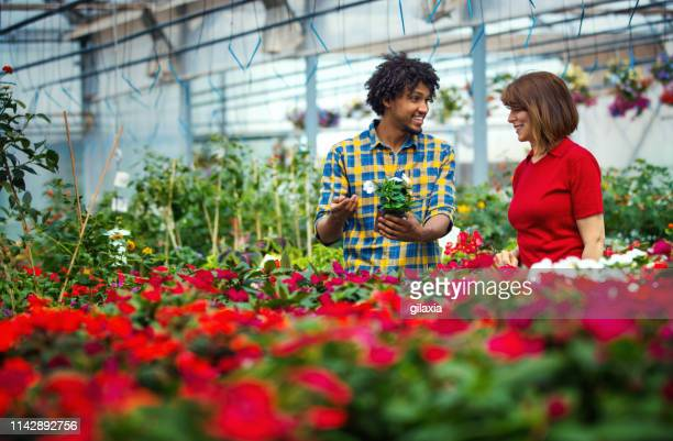 greenhouse florist selling some potted flowers. - botanist stock pictures, royalty-free photos & images