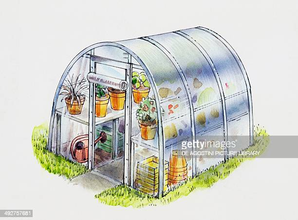Greenhouse illustration