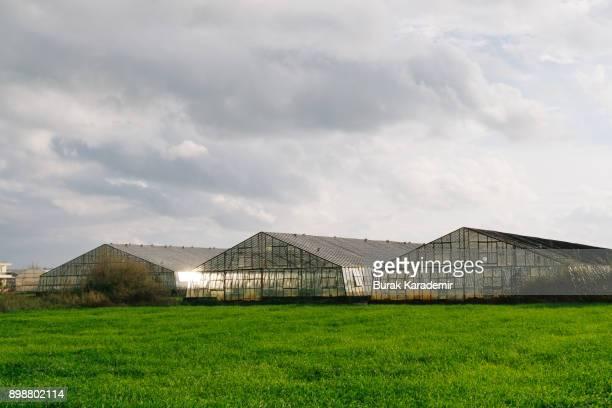 Greenhouse in Antalya in Turkey