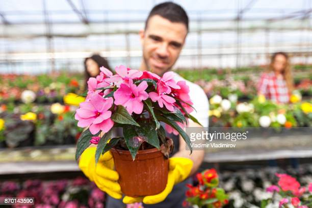 Gewächshaus Arbeiter halten Blumentopf