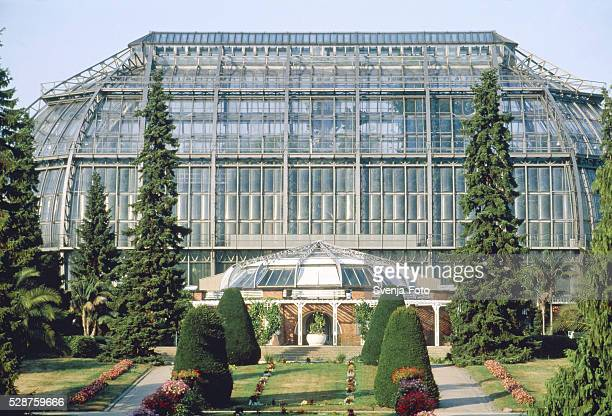 greenhouse of the botanical garden in berlin - botanical garden stock pictures, royalty-free photos & images