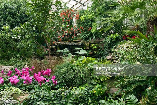 Greenhouse Series