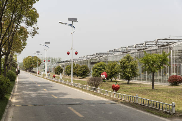 CHN: Media Tour of Guangling Modern Agriculture Science and Technology Park