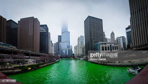 greening of the chicago river - rolour garcia stock pictures, royalty-free photos & images