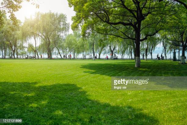 greenland by the west lake in hangzhou, china - parco pubblico foto e immagini stock