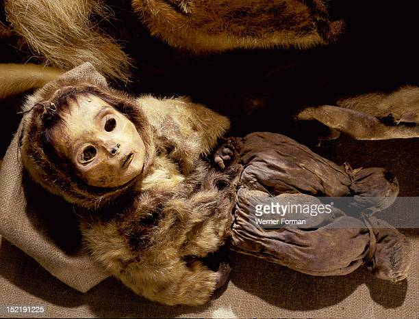 Greenlandic child preserved through natural mummification One of a group of 6 women and 2 children all buried together in the same grave Greenland...