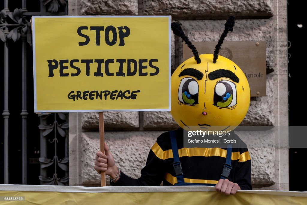 "Greenpeace and Bee Keepers Hold ""Stop Pesticides"" Protest : News Photo"