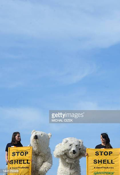 Greenpeace activists dressed in polar bear costumes and holding banners stage a protest on May 10 2012 on the roof of a Shell petrol station in...