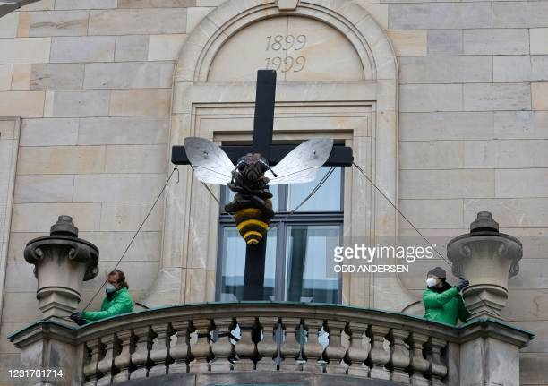 Greenpeace activists fix a crucified bee model on a balcony of Germany's agriculture ministry in Berlin on March 17 in order to protest against the...