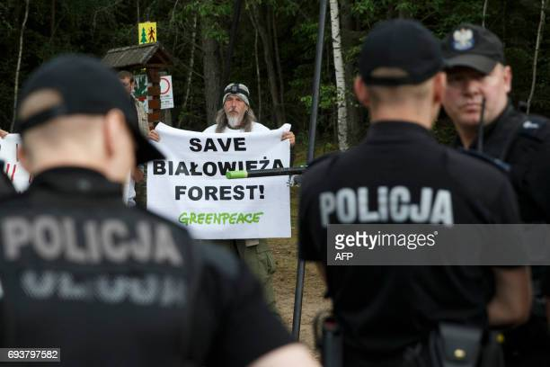 A Greenpeace activists protests cutting the trees of the Bialowieza forest during a protest in Czerlonka Poland on June 8 2017 PHOTO / Krystian MAJ