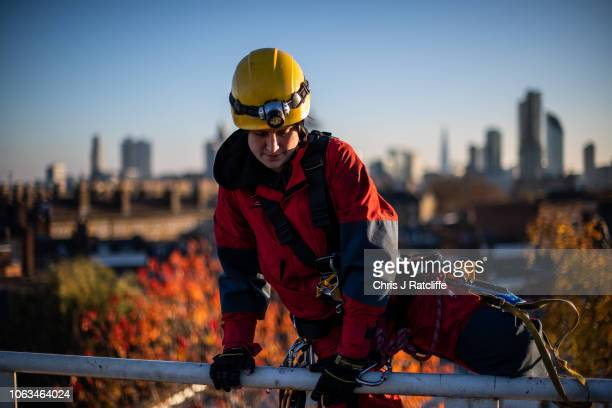 Greenpeace climbers train for an activism action the next day where they will create a burnt smoldering rainforest with a lifelike animatronic...