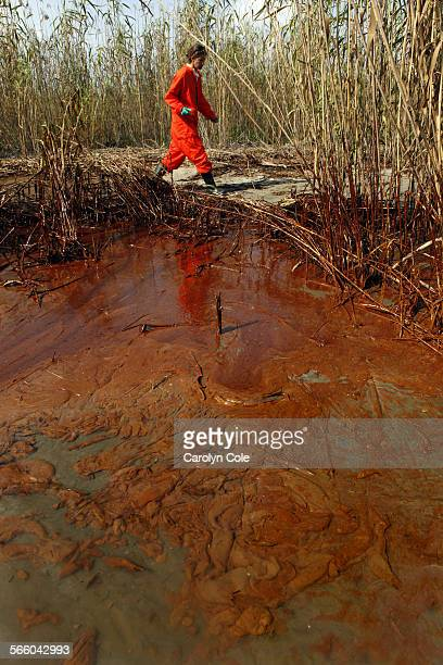 DELTA––Greenpeace senior campaigner Lindsey Allen takes water samples along a 20–yard area of marsh where oil is thick in concentration near the...