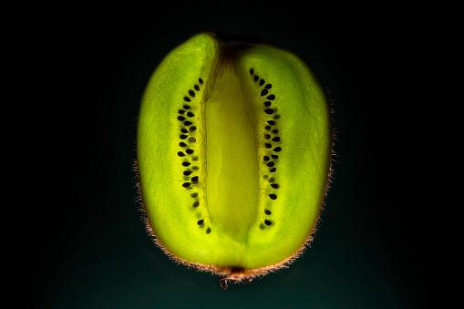 green's anatomy.. - gettyimageskorea