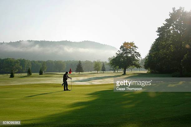 greenskeeper setting the pin - ground staff stock pictures, royalty-free photos & images