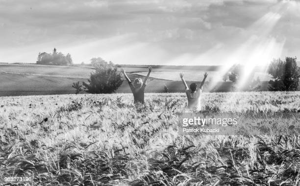greetings to the sun part 2 - kubacki stock photos and pictures