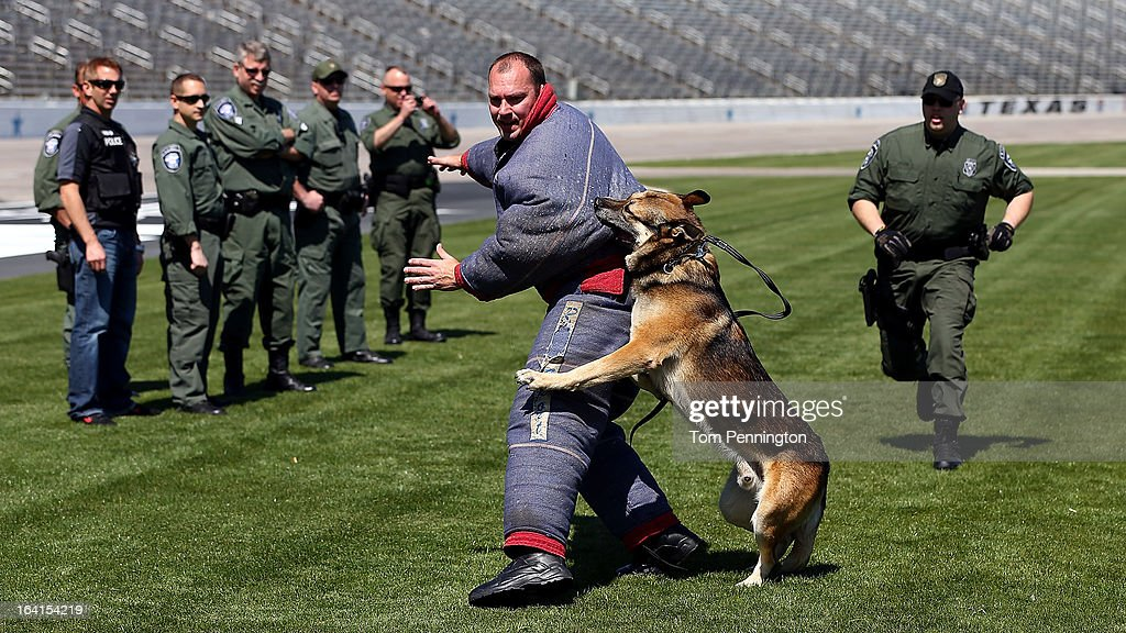 Greg Biffle (L), driver of the #16 3M Ford Fusion, watches a Fort Worth Police Department K-9 exercise during an exhibition at Texas Motor Speedway on March 20, 2013 in Fort Worth, Texas.