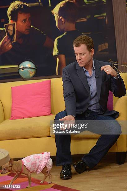 Greg Kinnear is on the set of Despierta America at Univision Headquarters on April 1, 2014 in Miami, Florida.