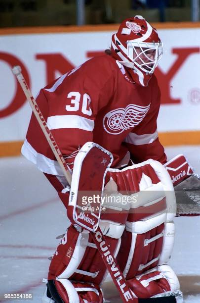 Greg Stefan of the Detroit Red Wings skates against the Toronto Maple Leafs during NHL game action October 28 at Maple Leaf Gardens in Toronto...