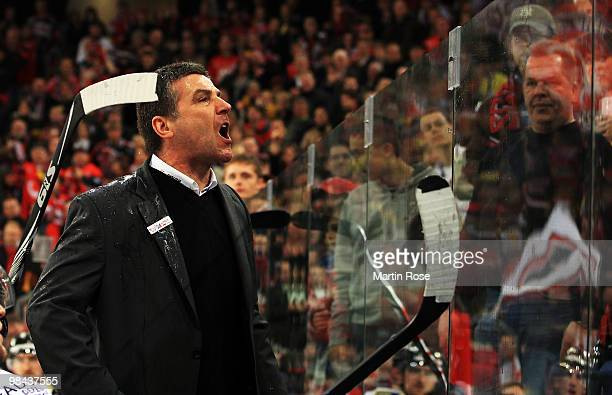 Greg Thomson head coach of Ingolstadt screams to the fans of Hannover after he was hit by a beer during the third DEL play off semi final match...
