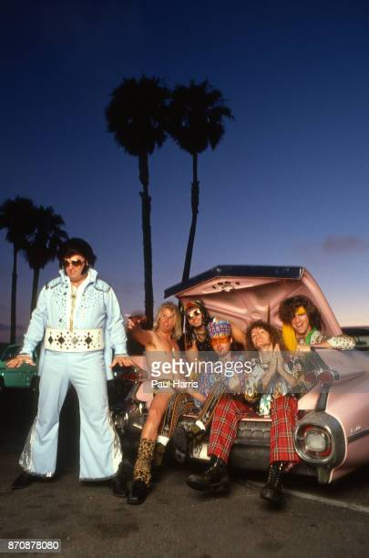 Greg Tortell was a 300pound Vegasera Elvis impersonator Tortelvis who played with Dread Zeppelin The band supposedly met Tortelvis when he rammed his...