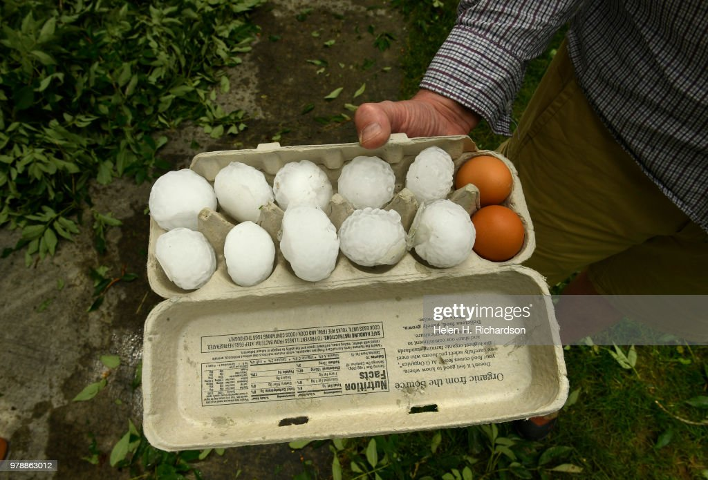gregg crouger shows ten large hail stones that look like eggs that he nachrichtenfoto getty. Black Bedroom Furniture Sets. Home Design Ideas