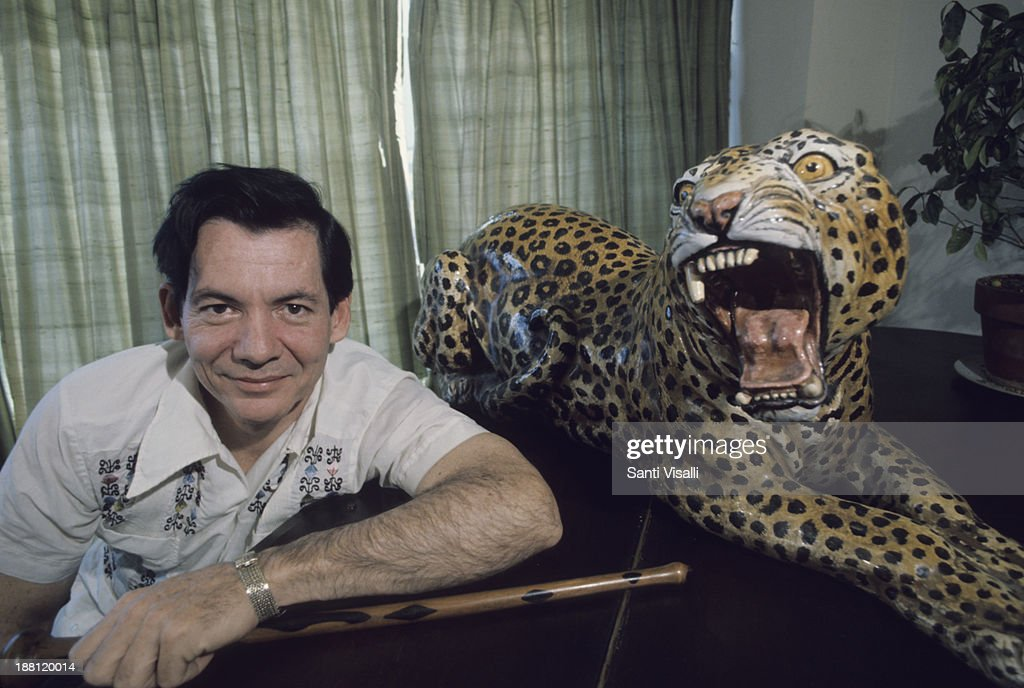 https://media.gettyimages.com/photos/gregory-hemingway-at-home-posing-with-a-tiger-on-october-5-1975-in-picture-id188120014