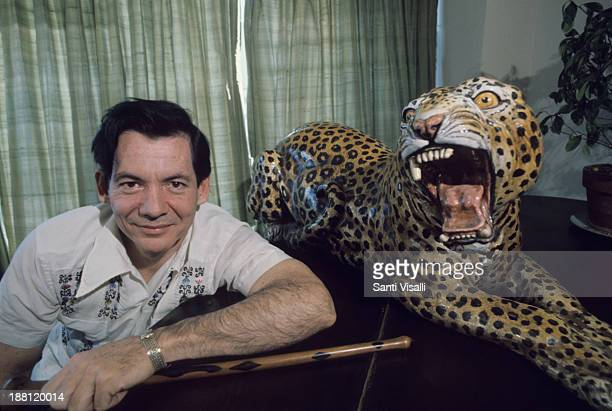 Gregory Hemingway at home posing with a tiger on October 5 1975 in New York New York