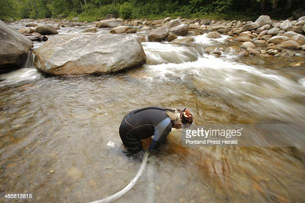 Charlie Smith uses a hose to pump sediment from the Swift River through his dredge while prospecting for gold on the river in Byron on Wednesday July...